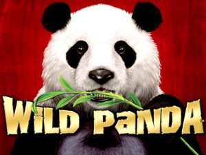 wild panda slot machine
